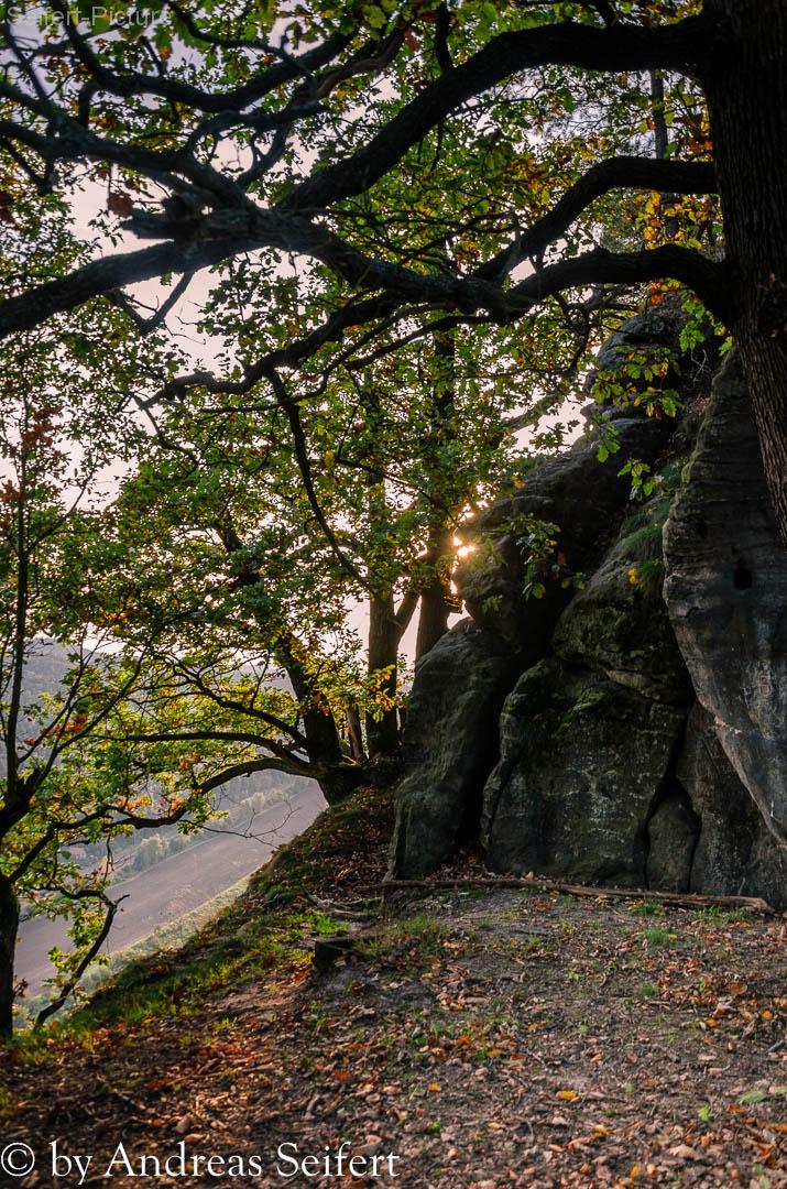Sächsische-Schweiz-9169